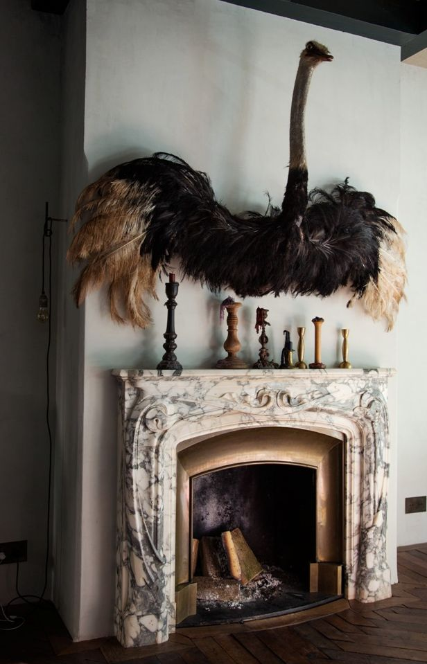 Taxidermy taken to the extreme. (by Decorista Daydreams from bloglovin.com)